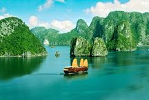 Vietnam 2013 / by the girl & the fig