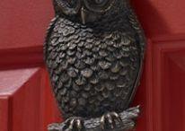 Owl's / by Kim Dean