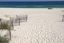 Beachiness / by Dana Keith