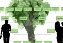 Genealogy  / by Debra Clemence-Roman
