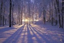 Baby it's cold outside... / Winter scenes / by Melissa Soebbing
