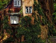Tree Houses / by Kristen Paul