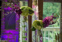 Flowers / by Denise Merrigan