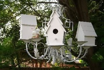 Birdhouses / by Theresa Green