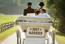 Wedding Ideas / by Sarah Peters