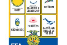 Ag Ed Ideas / by Laura Parker