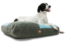 Made In America | Pet Products / by PierreGotHomes