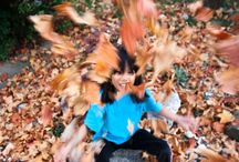 Fall photography / by Brittney Davis