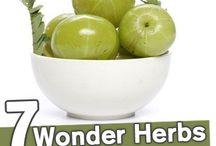 Holistic care NY / Home made recipes  / by Holistic care NY