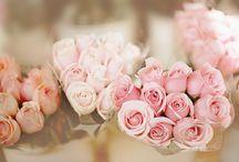 Flowers / by Deborah & Co.