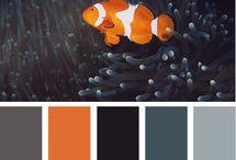 colors, tones, shades / by Jeramie Merrell