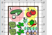 Vegetable garden / by Holly Kennedy