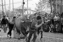 Herri-kirolak - Deportes rurales / by Getxo iruditan - Imágenes de Getxo