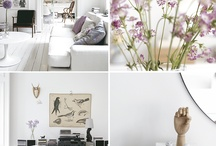 Violet & Lavenders / by Jenn Tavoletti