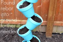 Garden ideas! / by Kate Patton