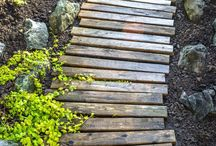 Pallet Projects / by Stacey Heuer