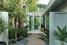 Front yard oasis / by Juliee Hofstetter