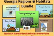 Georgia Focus Activities/Lessons / by Taylor Miller