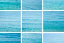 color palette / by Kelly Wayman