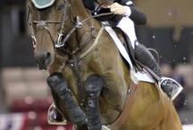 Uniquely Equestrian / by Sotheby's International Realty Santa Fe