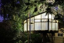 Treehouse / by Ivan