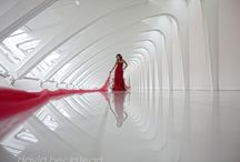 High Graphic Style! / A more graphical approach to wedding photography.  / by David Beckstead