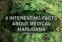 Medical Marijuana / by PositiveMed