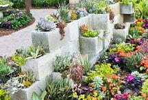 Gardening / by Katie Workman
