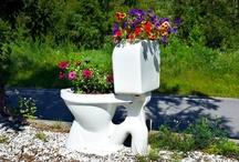 Garden / have / by odd magne Velde