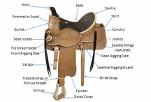 Horsemanship / by American Heritage Girls ~ Leader