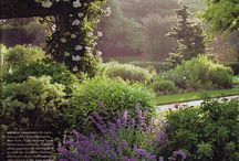 Gardens / by Sam Mooney