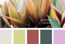 Awesome Color Schemes / by MAXBURST Web Design