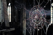 Spiderweb obsession / by Kat