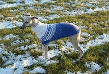 Dog knits / by Lisa Agnew