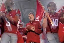 Facebook Cover Photos / Show all your Facebook friends your Cougar pride! Download one of our Facebook Timeline cover photos. / by Washington State Cougars