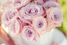 dream wedding <3 / by Amy Elizabeth