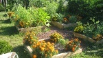 our someday school garden. / by Maria Canavello Mrasek