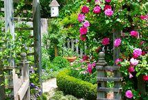 Gardens / by Katherine Jackson