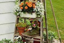 Patio/gardening / by Sarah Montemayor