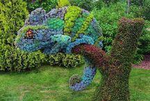 : Public Gardens : / by Suheiry Feliciano