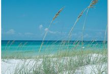 Beach ... / by Nellie Krams