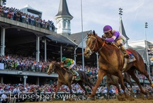 Kentucky Derby 2012 / by Horse Racing Nation