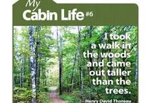Camp Morning Wood / by Kelly Novak Bowker