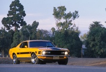 1970 Ford Mustangs / 1970 Ford Mustangs / by StangBangers