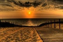 beach / by Debbie Honeycutt