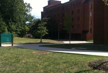 George Mason University / by Rick Jeffries
