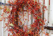 Wreaths and Door Hangings / by Susan Akers