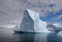 Ice, Ice, Baby / by Quark Expeditions