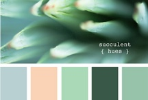 Shades of Colour / by Maggie Ward