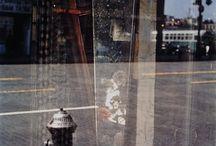 multiple exposures / by david milne